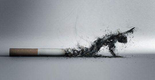تومورهای بدخیم سرطانی با استعمال دخانیات